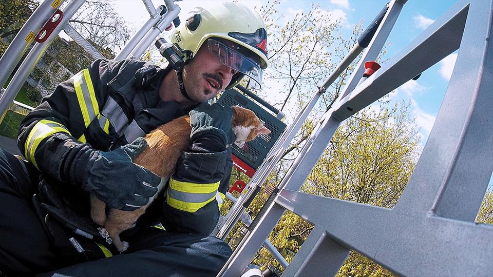 Feuer Flamme S02 E07 Feuer Flamme Sendungen A Z Video